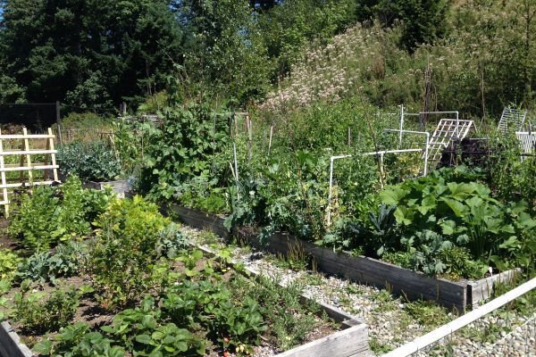 Gardens at Vista 1 2014