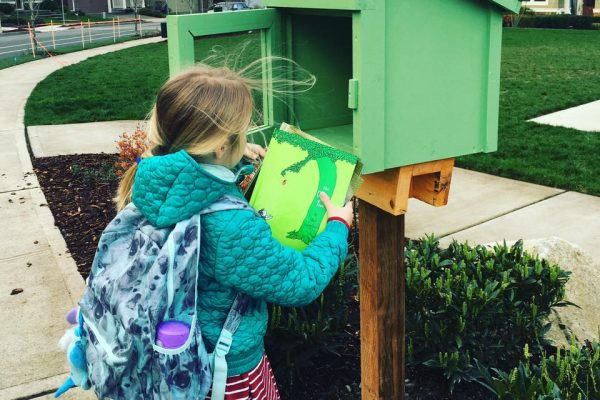 Little Library Forest Ridge
