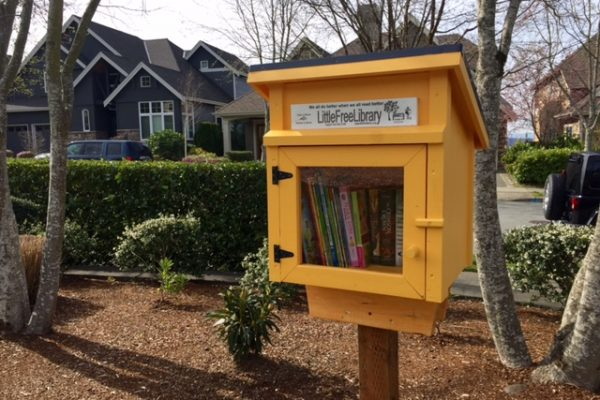 Little Library Logan Park