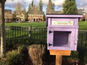 Little Library in Village Green