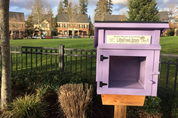 Little Library in Village Green