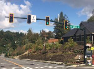 Lilac traffic light
