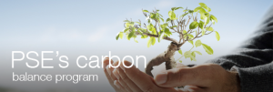 PSE Carbon Balance Program