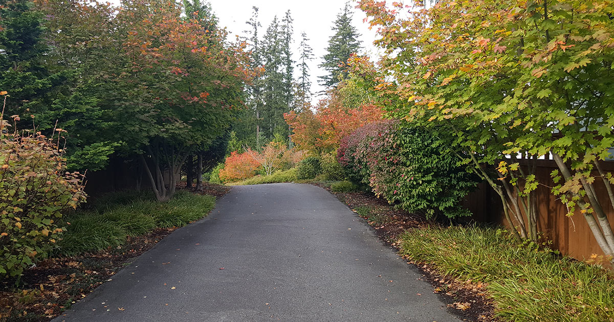 Issaquah Highlands Connections IHCA Fall Leaf Cleanup