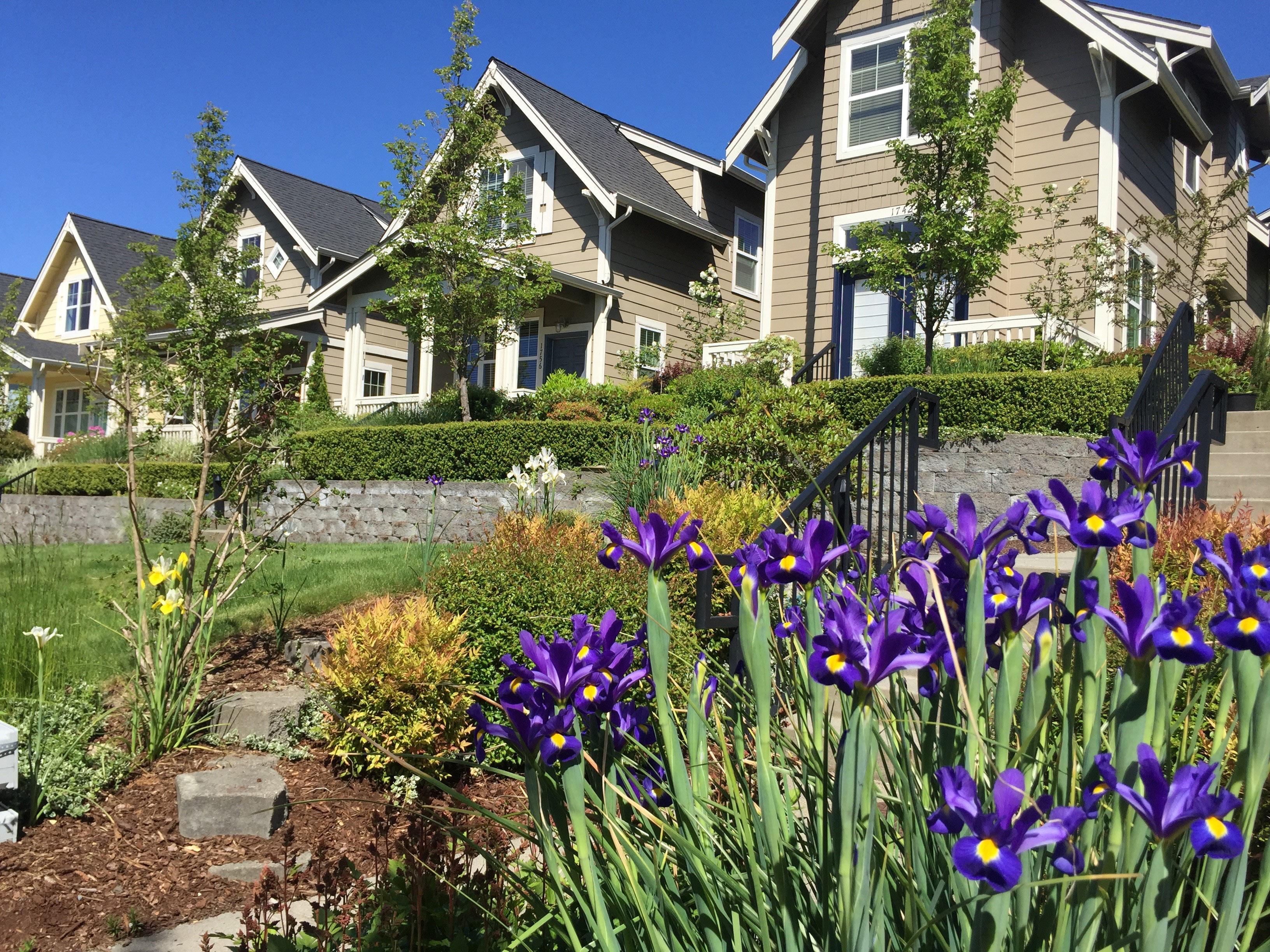 Issaquah Highlands Real Estate Crofton Cottages