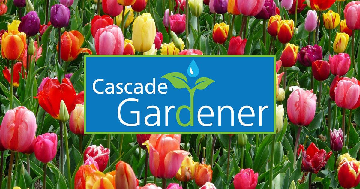 Cascade Gardener classes Issaquah Highlands