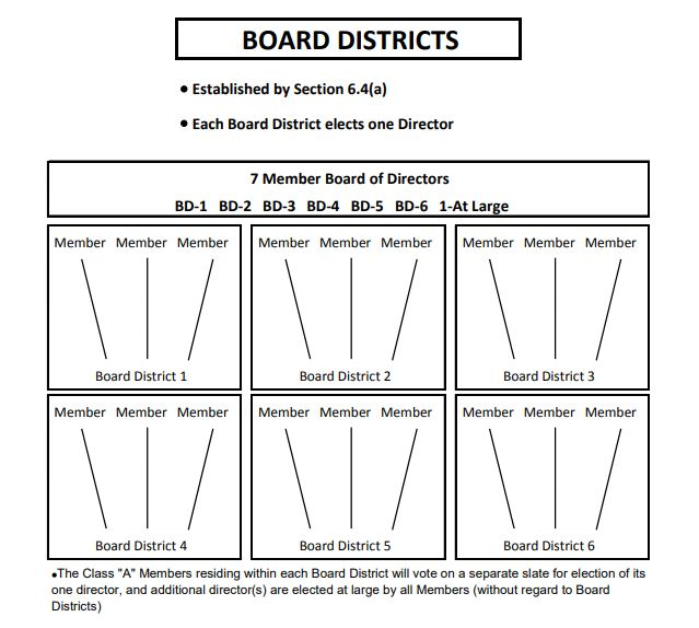 IHCA Board Districts Diagram