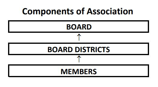 IHCA Components of Association