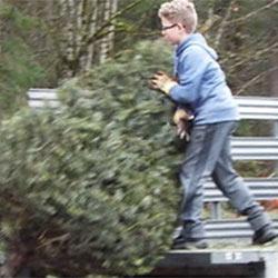 Boy Scouts Tree Pick Up