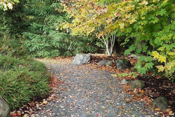 IHCA trail