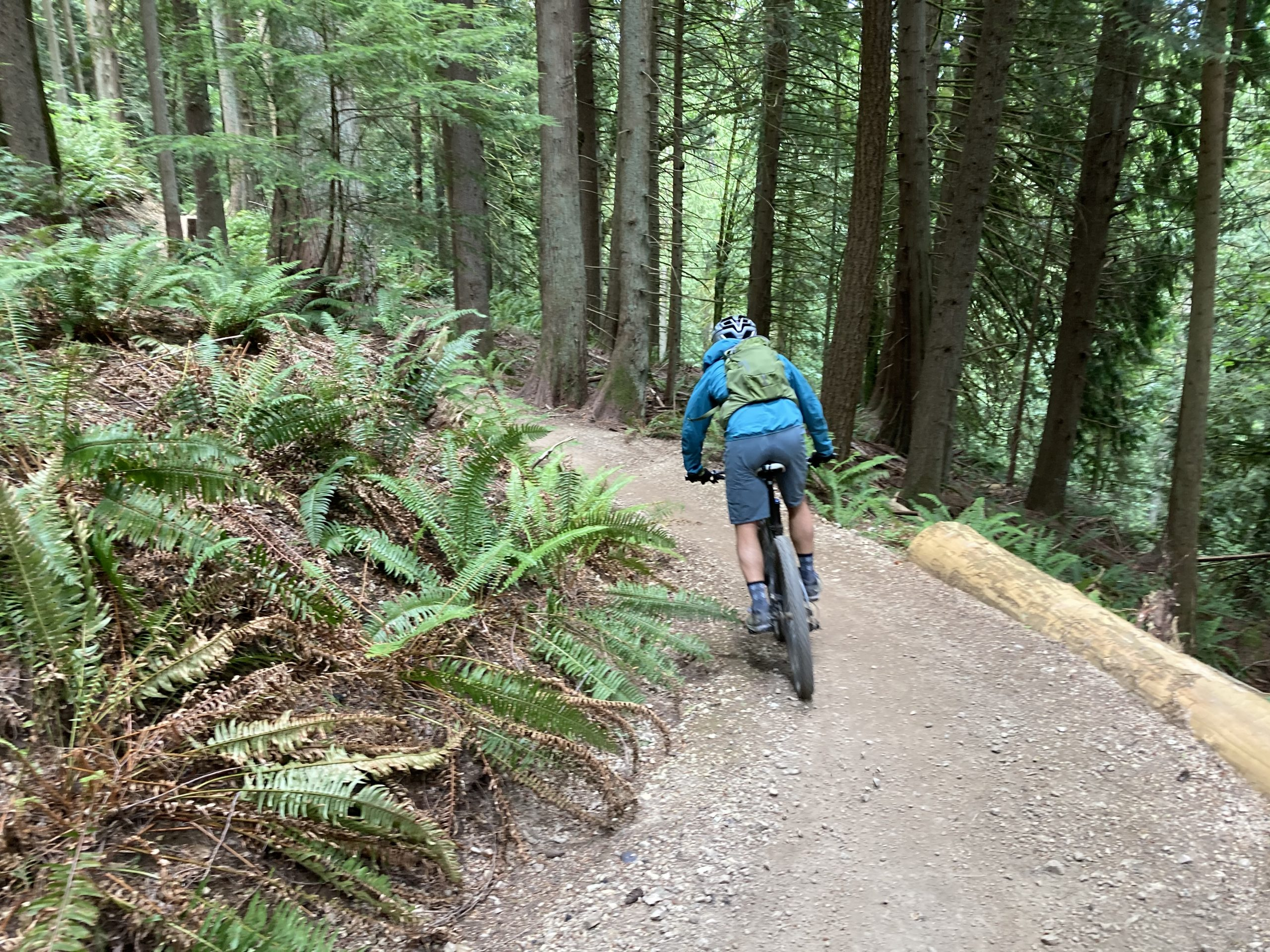 Kevin Burchett Spruce Coaster Trail