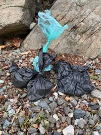Dog poop bags
