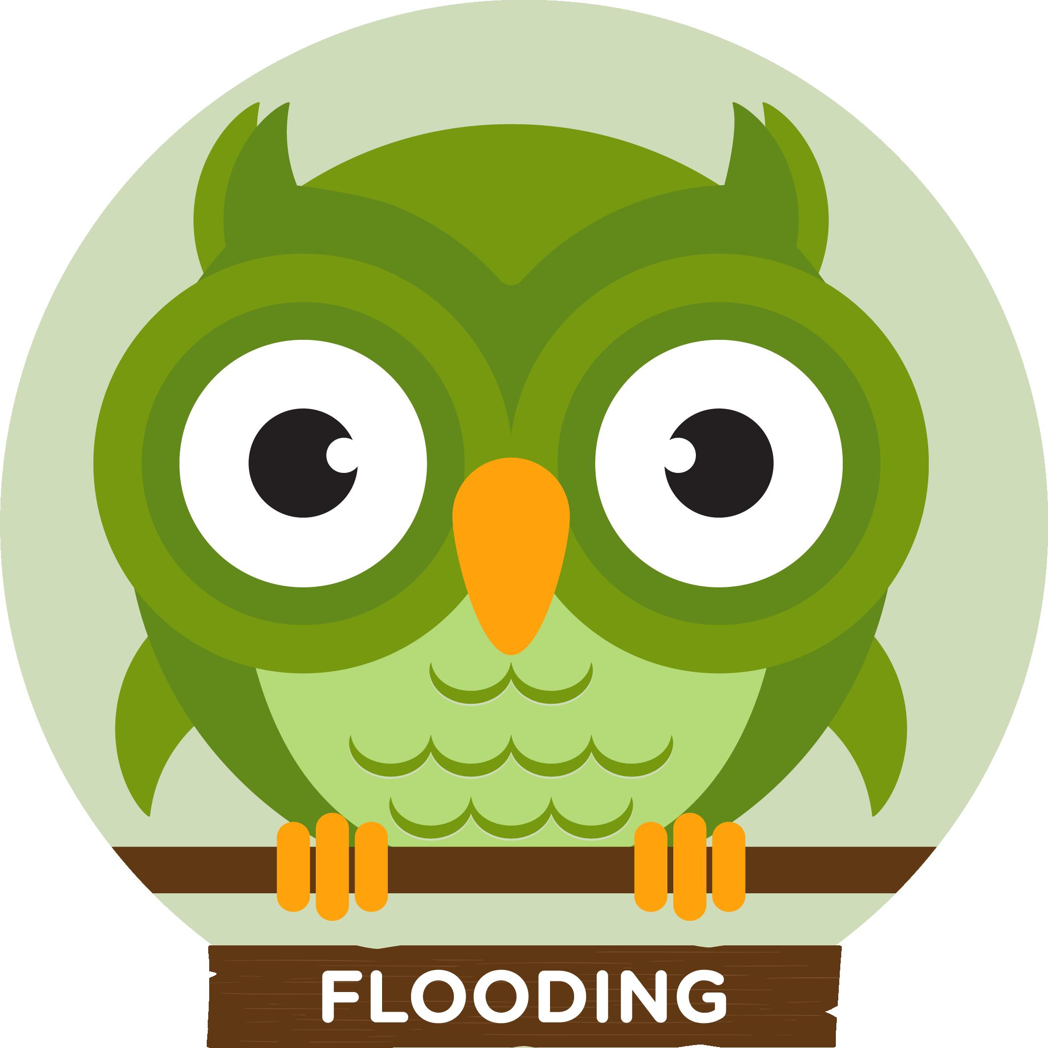 HFN Owlbert Flooding