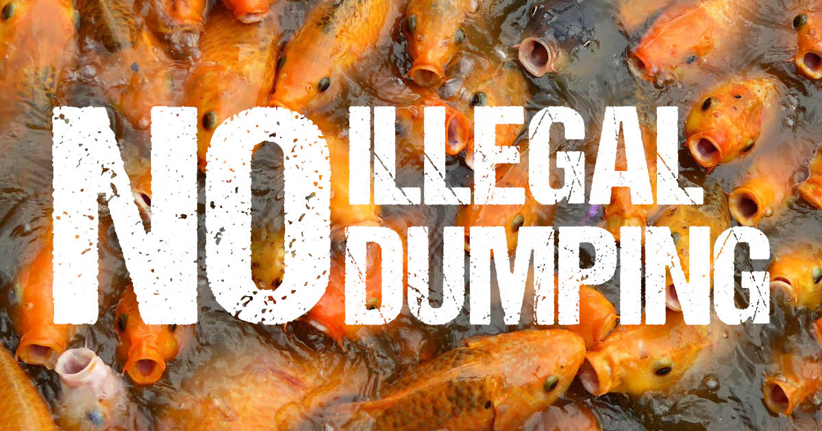 No Illegal Dumping