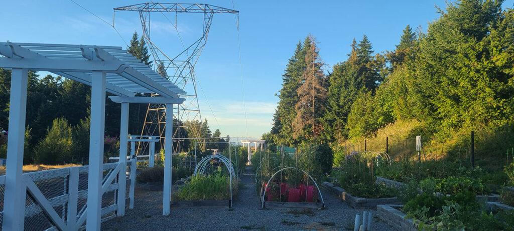 Vista Gardens Issaquah Highlands