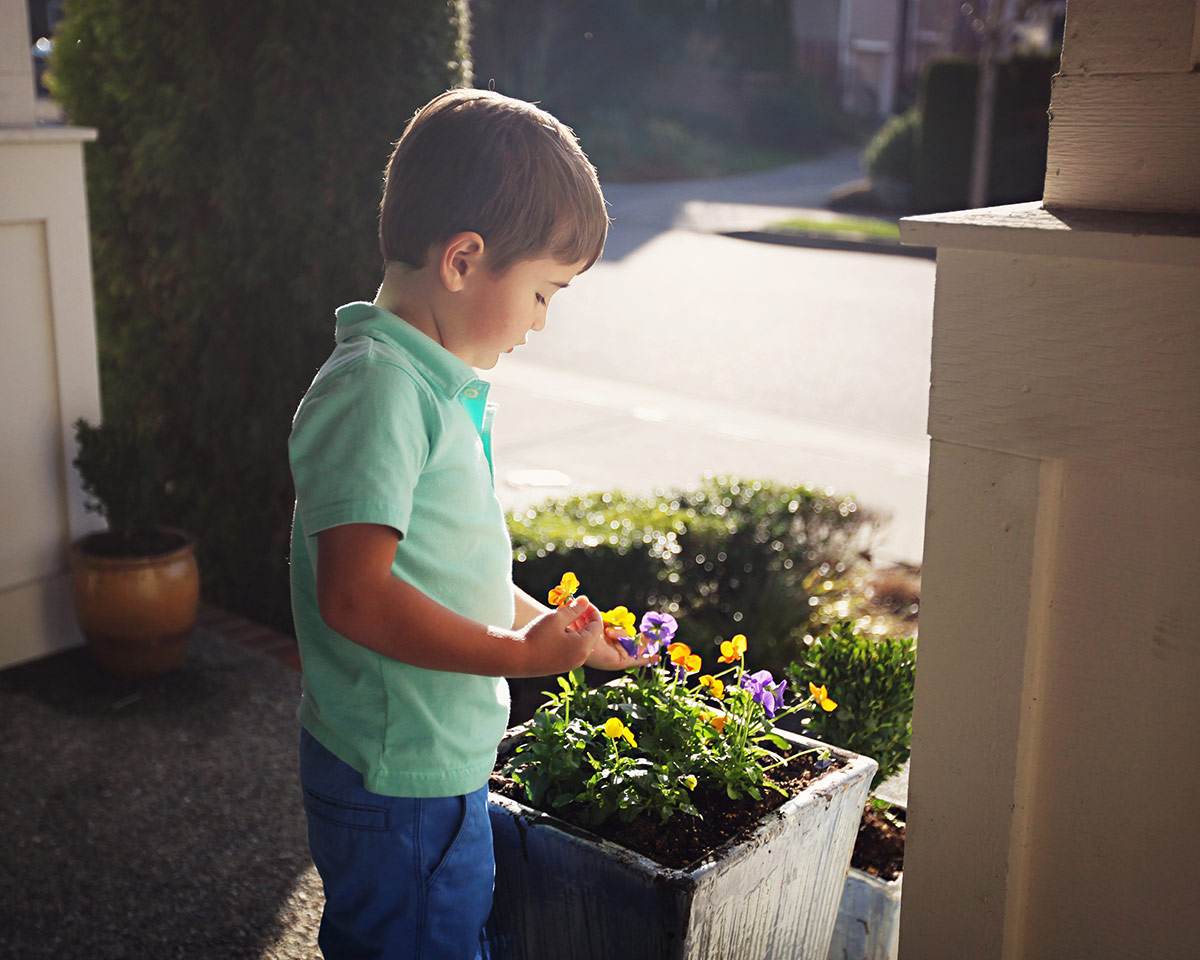 little boy picking flowers on the front porch