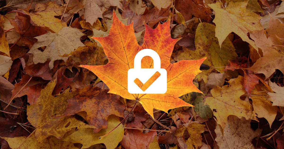 fall leaves network security